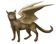 Felisfire Beta - Confirm Hatch Feli