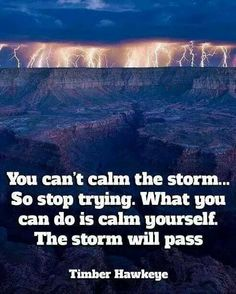 """You can't calm the storm...so stop trying.  What you can do is calm yourself. The storm will pass.""  --Timber Hawkeye"