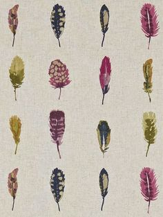 print & pattern |  harlequin amazilia