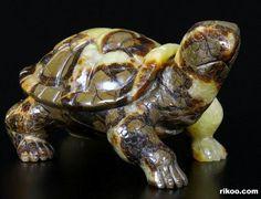 Dragon Septarian Stone Crystal Turtle