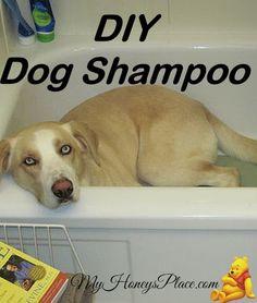 DIY Dog Shampoo - My Honeys Place