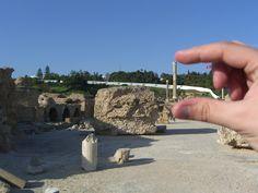 Me lo llevo! (Thermas San Antonino, Carthage, Tunisia)