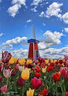 Holanda Quiero ir a ver este lugar un día