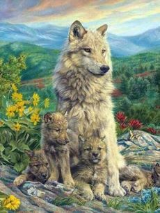 Wolf Pup, Wolf Spirit Animal, Draw Animals, Animal Totems, Hipsters, Werewolf, Animal Drawings, Art Pictures, Den