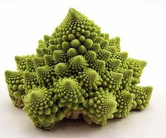 Breaking Physics Cauliflower -Yes, it's a cauliflower!  Yes, it's natural!  Yes, it's heirloom!  AND YES IT'S DELICIOOOUS!!!