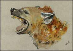 Hyena head study original watercolor painting by Juan Bosco 8 by 5 inches (21 x 15 cm)