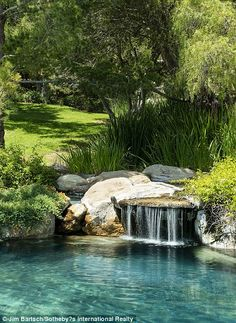 Having a pool sounds awesome especially if you are working with the best backyard pool landscaping ideas there is. How you design a proper backyard with a pool matters. Backyard Pool Landscaping, Swimming Pools Backyard, Ponds Backyard, Swimming Pool Designs, Lap Pools, Indoor Pools, Pool Decks, Natural Swimming Ponds, Natural Pond