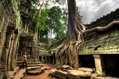 Temples of Angkor & Siem Reap (Cambodia). 'One of the world's most magnificent sights, the temples of Angkor are so much better than the superlatives. Angkor Wat Camboja, Angkor Vat, Beautiful Places To Visit, Great Places, Places To See, Amazing Places, Amazing Things, Fun Things, Siem Reap
