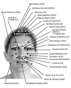 Planche de réflexologie faciale