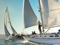 A mild climate and steady winds make San Diego the ultimate playground for boating of all kinds. From sabots to super yachts, cruise ships to catamarans, recreation to racing, San Diego is the place...