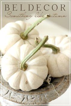 BELDECOR: something like autumn