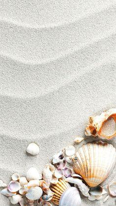 Muscheln am Strand- - Wallpaper Iphone 7 Plus, Ocean Wallpaper, Summer Wallpaper, Iphone Background Wallpaper, Pastel Wallpaper, Aesthetic Iphone Wallpaper, Aesthetic Wallpapers, Iphone Wallpapers, Mobile Wallpaper
