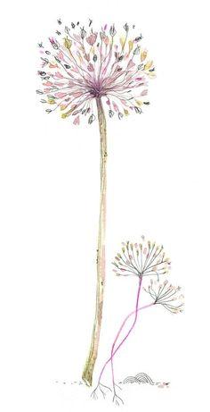 Pretty watercolour ,pen and ink drawing , dandelion flock art.