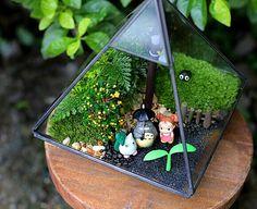 Special diamond glass terrarium Plant holder by BloomFunstore