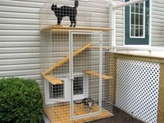 Catio - Cat Patio cool way to let cats out without the cat destroying the neighbors garden! they have large plans to and many types of cat enclosures. Dog Enclosures, Outdoor Cat Enclosure, Cat Run, What Cat, Outdoor Cats, Indoor Outdoor, Animal Projects, Diy Projects, Cat Furniture