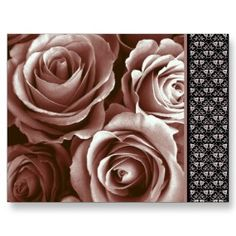 Get your hands on a customizable Teal postcard from Zazzle. Find a large selection of sizes and shapes for your postcard needs! Pink Rose Bouquet, Lilac Flowers, Mauve Wedding, Wedding Flowers, All Things Purple, Wedding Planning, Wedding Ideas, Thank You Cards, Tea Party