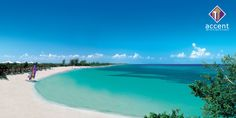 """See 353 photos from 2077 visitors about beach, gastronomy, and tourism. """"Cuba's most popular tourist destination, Varadero is home to Playa Azul, a. Cayo Santa Maria, Varadero Cuba, What A Beautiful World, Most Beautiful Beaches, Beautiful Places, Royal Caribbean, Caribbean Honeymoon, Glacier Express, Places To Travel"""