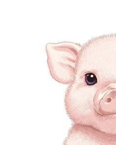 Girl Names Discover Pig Art Pig Painting Pig Print Pig Illustration Painting Animal Painting Print Pig Nursery Art Pig Baby Pig Pink Piglet Farm Animal Print. Illustration Mignonne, Pig Illustration, Illustrations, Watercolor Illustration, Pig Wallpaper, Animal Wallpaper, Baby Animal Drawings, Cute Drawings, Baby Animals