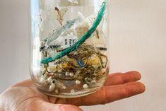 Perth's first ocean rubbish bin is sucking plenty of plastic out of the sea Marine Debris, Types Of Plastics, Plastic Pollution, Organic Matter, Local Artists, Perth, Gossip, Ocean