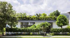 tuin op het dak