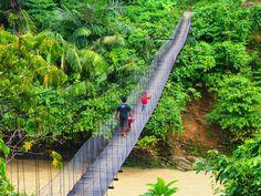 Tangkahan, North Sumatera, Indonesia