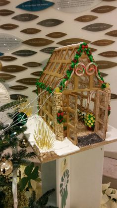 My gingerbread house on display at the Cleveland Botanical Gardens is a third place winner!