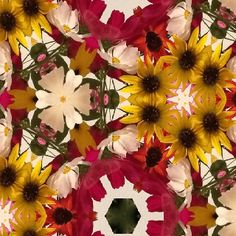 Kaleidoscope effect from: Mega photo booth app