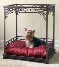 luxury pet bed!