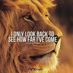 #successful #success #motivation #hustlehard #mondaymotivation #marketingdigital #entrepreneur #entrepreneurship #empire #follow4follow #instagood #dreams
