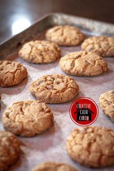 Chocolate Chip Cookie Recipe - Creative Cain Cabin