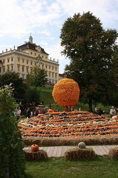 Oh.My.GAWD.  How did I not know about this??? World Pumpkin Festival, Ludwigsburg Castle