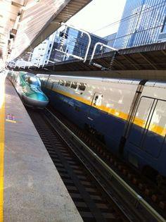 東北新幹線はやぶさ(新型車両E5系)