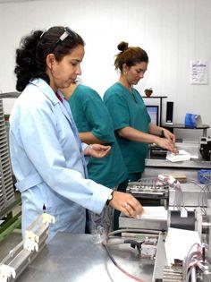 #Inmunoensayo, tres décadas de ciencia - Radio Reloj: Radio Reloj Inmunoensayo, tres décadas de ciencia Radio Reloj La Habana, Cuba.- Hoy 7…