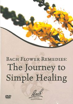 Flower Remedies :) my newest journey
