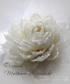 Gallery.ru / Фото #191 - не букетное, но цветочное - semynova