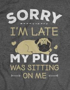 ideas funny animals dogs pugs for 2019 Pug Quotes, Dog Quotes Love, Dog Quotes Funny, Funny Dogs, Funny Animals, Mom Funny, Dog Memes, Qoutes, Black Pug Puppies