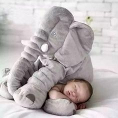 baby sleeping with elephant pillow