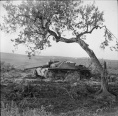 NOV 30 1943 Germans turn against Italian civilians - See more at: http://ww2today.com/30th-november-1943 The Sangro River November 1943: A German Mk III Special tank knocked out near San Salvo during the advance to the Sangro.