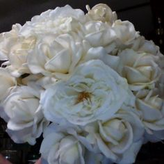 Callie's, White Garden with Hybrid Tea Roses and simple green rose foliage.