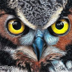 Mafnificent painting. .!! .Credit : @andycvillon -  Finished drawing of the #owl! Check out the time lapse video of how I drew it on my YOUTUBE channel.Link in my bio.  . I am now accepting commissions! Email me at andycvillonart@gmail.com or DM if you are interested!! .  For amazing owl photos and videos follow @owl.gifts #owl #owls #owllove .