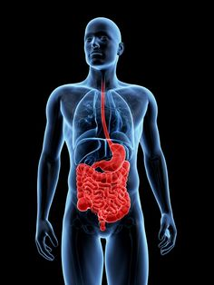 Inflammatory bowel syndrome (IBS) is the name of a group of disorders in which the large intestine (colon) becomes inflamed. Inflammatory Bowel Syndrome, Leaky Gut Syndrome, Diverticulitis, Kidney Disease, Crohn's Disease, Kidney Failure, Kidney Dialysis, Kidney Infection, Disease Symptoms