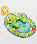 Tiny Love Tummy-Time Frog - CookiesKids.com. Baby Shower Gift Ideas