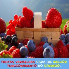 Frutas vermelhas como morango e mirtilo, podem gerar um melhor funcionamento do cérebro. Ingerir pelo menos uma vez por semana pode proteger contra a perda de memória causada pelo envelhecimento. #frutasvermelhas #morango #mirtilo #frutas #memória #cérebro #envelhecimento #proteção