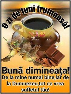 Imagini buni dimineata si o zi frumoasa pentru tine! - BunaDimineataImagini.ro Good Morning, Butterfly, Cat Breeds, Buen Dia, Bonjour, Butterflies, Good Morning Wishes