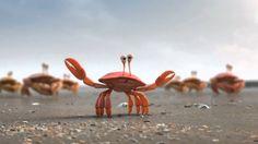 De lijn Krab en meeuw reclame