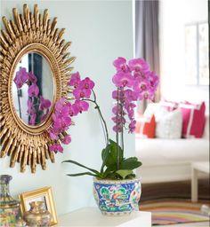 Starburst mirror + orchids