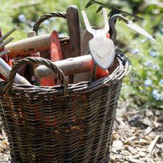 Als het gaat om tuinonderhoud zijn er waanzinnig veel klussen te bedenken, maar wanneer pak je...