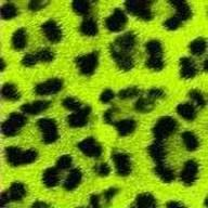 yellow and green leopard