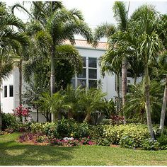 Tropical Landscape Design, Pictures, Remodel, Decor and Ideas - page 98