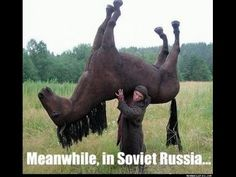 Nebunii din Russia 2015 HD